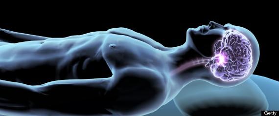 r-sleep-neuroscience-large570