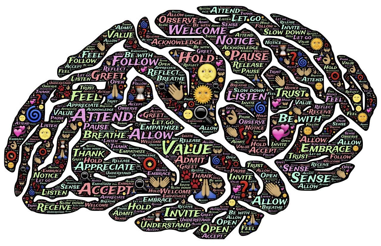 Meditation-Presence-Mindfulness-Brain-Mind-Mindset-744207.jpg