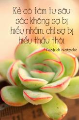 Friedrich Neitzsche — 'Every deep thinker is more afraid of being understoodthan of being misunderstood.'
