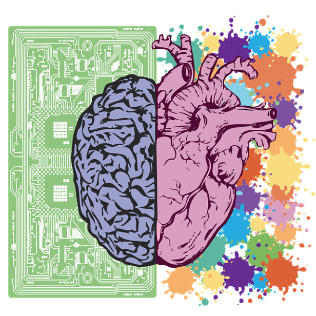 brain-3017071_640.png