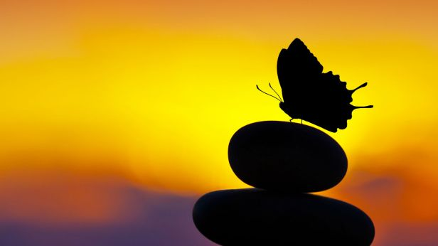 human-longevity-life-extension-stones-balance-butterfly-silhouette-104097998.jpg