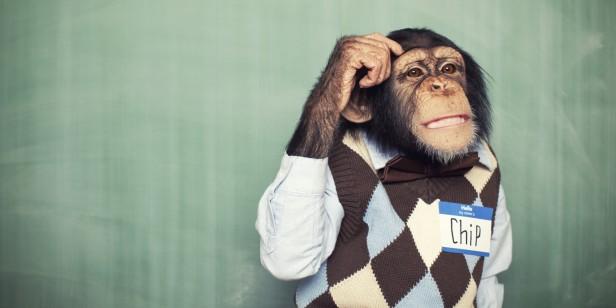 o-ANIMAL-THINKING-VINTAGE-facebook